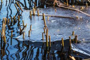 pond ice, pond de-icer, pond maintenance, pond water care, pond winter care