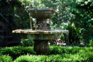 algae in fountain, fountain cleaning, garden fountains, algae