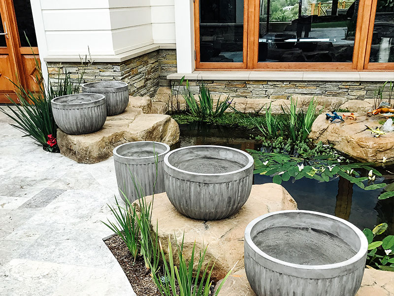 What are the Top 5 Benefits of Having a Water Garden?