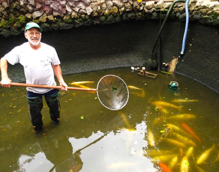 pond supply, ponds store, pond maintenance, local ponds store LA, pond equipment