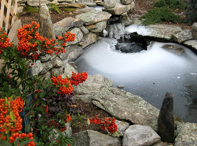 pond winter care, koi fish, koi fish pond, frozen koi pond, pond winterization, pond maintenance, pond fall care